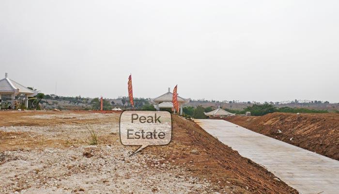 peak estate willow extension